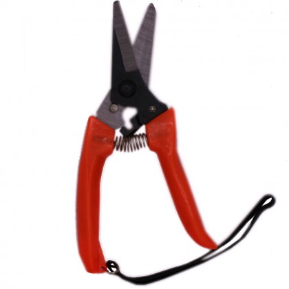 7 Inches Straight Gardening Scissors Tools